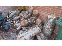 Willow logs free to collector
