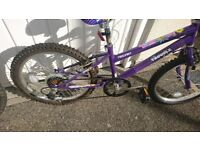 Childs girls bike