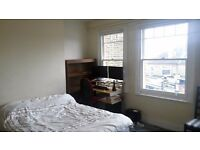 Large, sunny double room for girl in professional, friendly flatshare