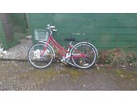 """Victoria Pendleton Bike 26"""" Great condition with basket"""