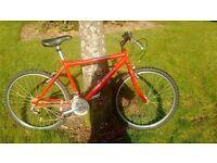 Raleigh Firefly Boys Bike 18 Speed All Terrain