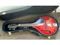 Rally semi acoustic mandolin with hard case and book good condition
