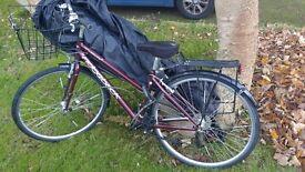 Ridgeback Velocity Lady's Bicycle
