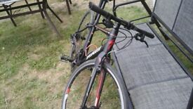 Specialized comp vita bicycle