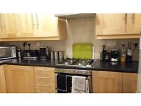 Short term let (4 months) - 2 bedroom property Canary Wharf with parking, garden, BBQ
