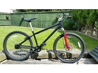 Small Adult/Teen Mountain Bike.