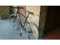 Giant bike rapid 3