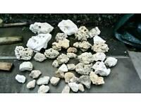 50 kilo of of ocean rock for sale