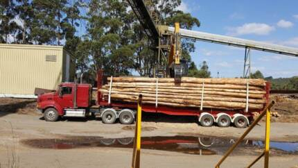 Log Truck and trailer combination