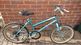 "Girls 20"" Six Speed Shimano geared bicycle"