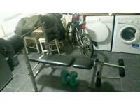 Weight bench with leg developer and 30kg discs
