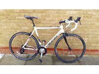Viking men's road bike racer bicycle bargain