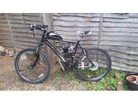 bike with 80cc 2t engine