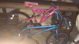 Dimondback and octane bike