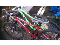 Silver Fox & Muddy Fox mountain bikes