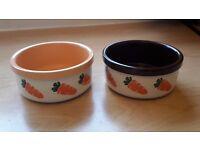 Two ceramic bowls