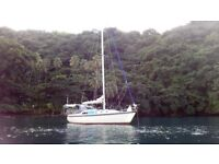 Sailing partner to join me cruising on my boat in Caribbean. Mature woman, no experience required