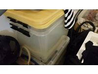 Two large plastic storage boxes