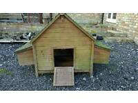 Chicken / poultry house