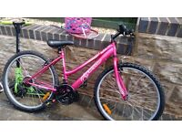 Dunlop ladies 18 speed mountain bike