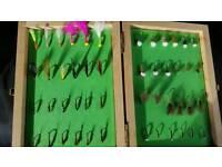 Box of flies