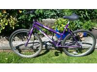 Ladies Universal Extreme 19 inch frame 26 inch wheels Good working condition and ready to
