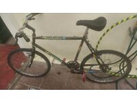 Carerra Hybrid Bike Size Large