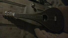 weissenborn acoustic slide guitar