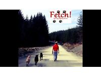 Fetch!Fife Dog Walking Service. Dog walker
