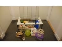 Massive Bundle of Small pet/hamster items including Large Little Friends Cage and Giant Kaytee Wheel