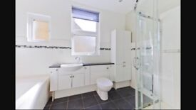 FREE Bathroom basin and toilet cabinet