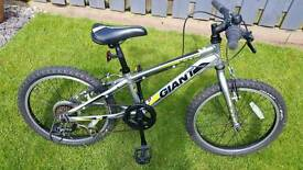 "Giant XTC Junior 20"" Bike"