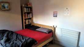 Lovely double room to rent in shared house, Bedminster