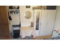 Beautiful double room in Wimbledon! We are looking for a quiet, clean and responsible person !