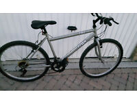 Trax Hybrid bike £50