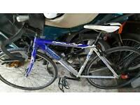 Apollo TDF02 aluminium road bike 54cm