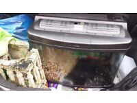 LARGE FISH TANK / ALL ACCESSORIES 2 PUMPS, PLANTS,FLUVAL, STONES, LIGHTS, PLUS A LARGE STONE TEMPLE