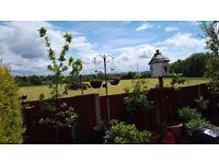 Looking to move near Shrewsbury/Bridgnorth and surrounding area from Hinstock