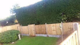 FENCING , DECKING AND GARDEN WORK