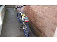 Kids City/Mountain Bike (Offers)