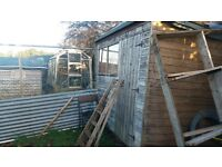 shed 8x6 for sale