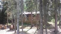 Whiteswan Lake cabin (whelan bay)NEW PRICE! !