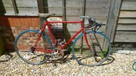 Falcon Campagnolo racing bike