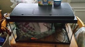 Goldfish tank and accessories and food