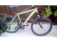 Mountain bike for sale 2 mouths old
