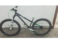 DMR reptoid dirt jump street bike