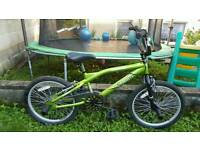 Brand New Cobra BMX bike