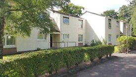 Independent Living in Alloa