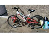 Children's indi unleashed mountain bike