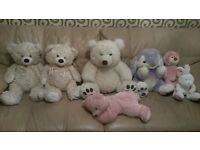 Excellent condition all teddy bear only £10 not included purple teddy total 6